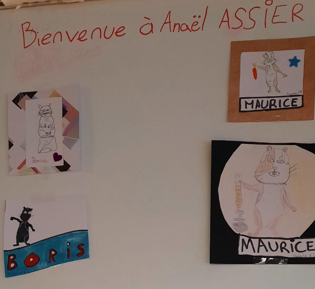 Les dessins de Boris et Maurice effectués par les enfants du club lecture du collège de Portes les Valence